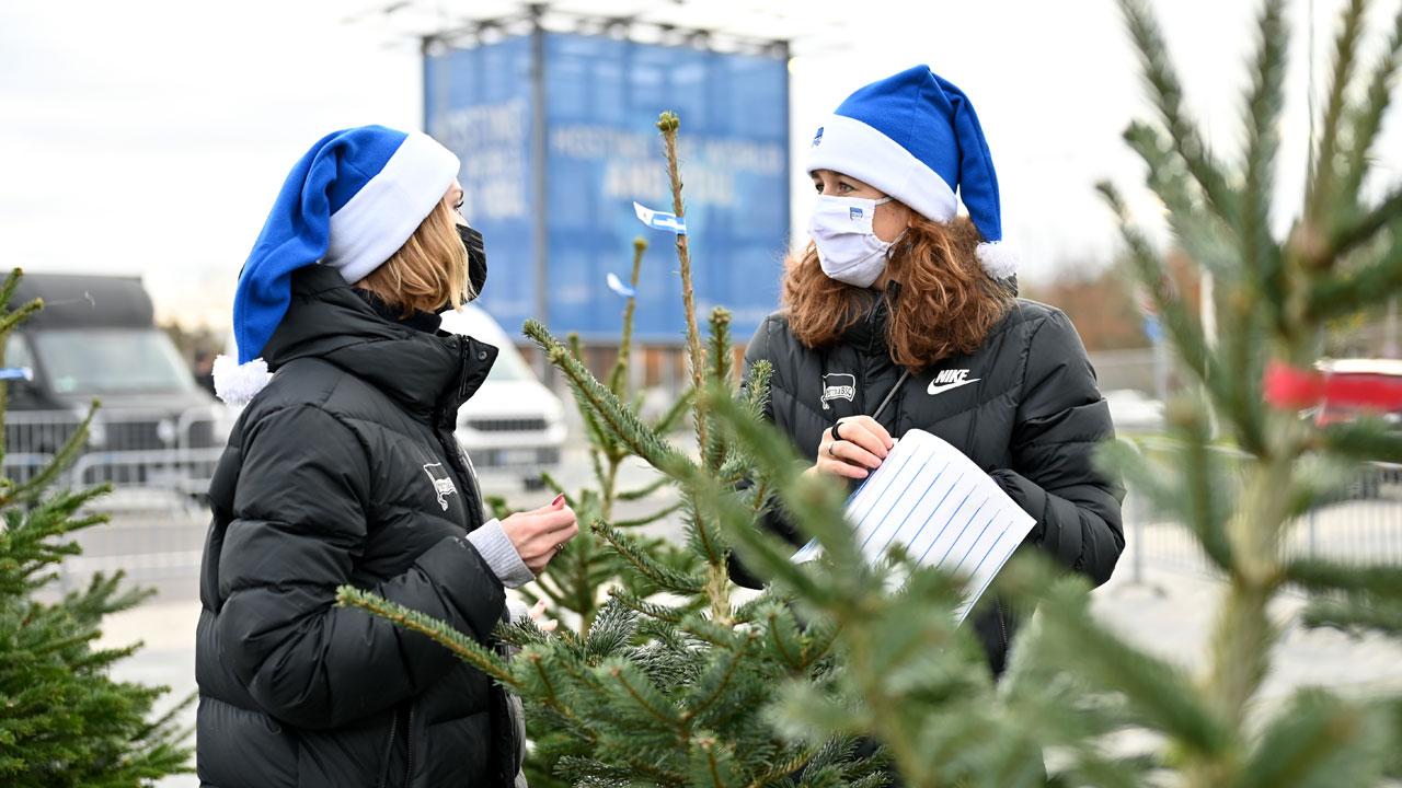 weihnachtsbaumverkauf-2021_3