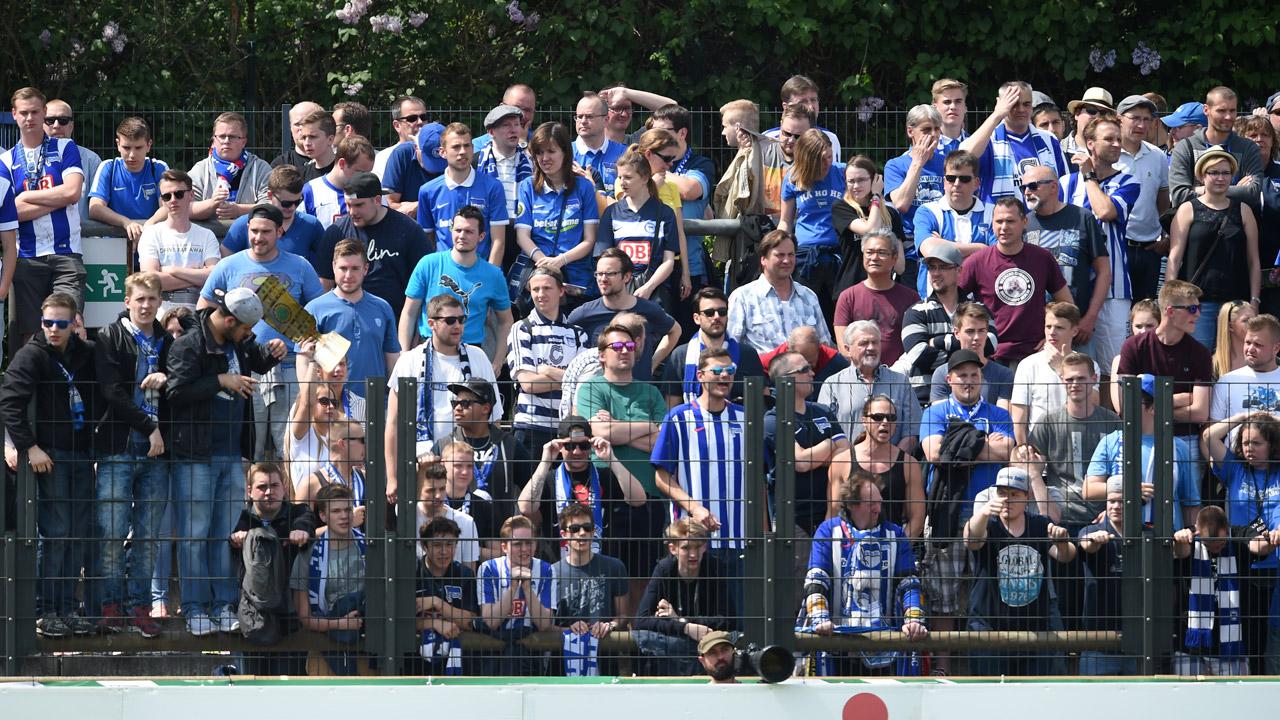 u19-finale-hertha-hannover-1516_26