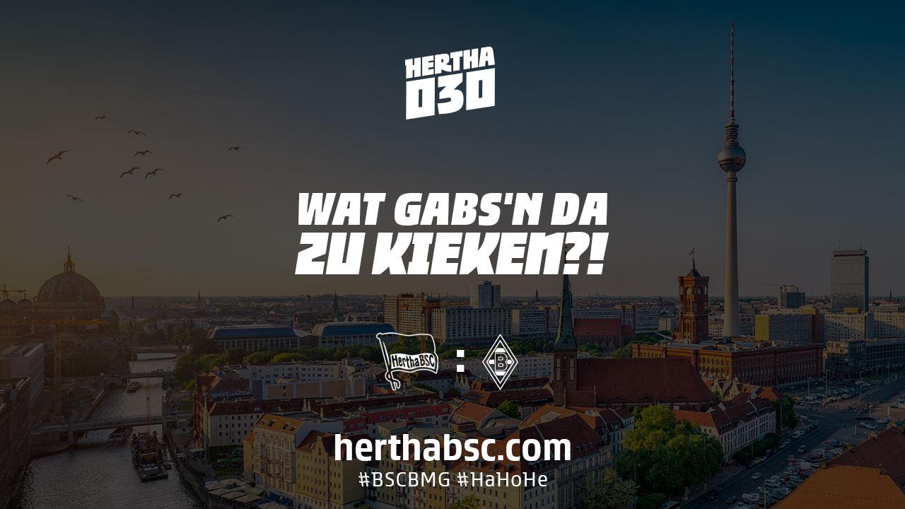 Das Logo von Hertha030